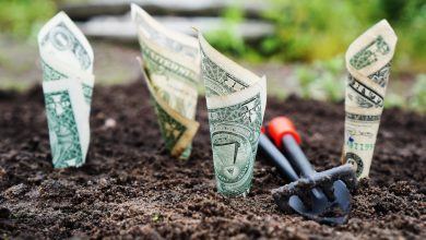 8 דרכים שילמדו אתכם כיצד להרוויח כסף מהבית ב 2019 בלי לזוז מהמחשב