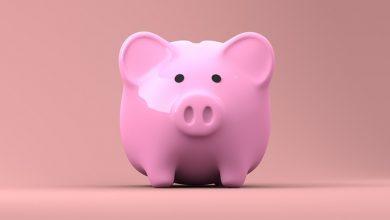 5 שלבים ליצירת הכנסה אוטומטית שתעזור לכם להכניס אלפי שקלים בחודש