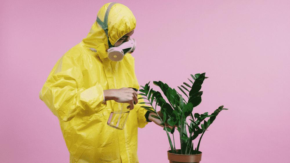 7 דרכים יעילות לעבוד מהבית במהלך התפרצות וירוס הקורונה